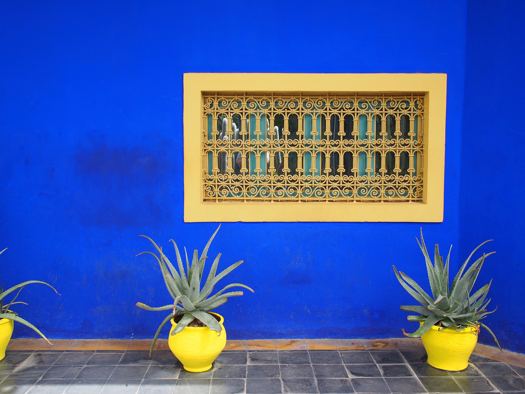 Jardin Marjorelle cobalt blue