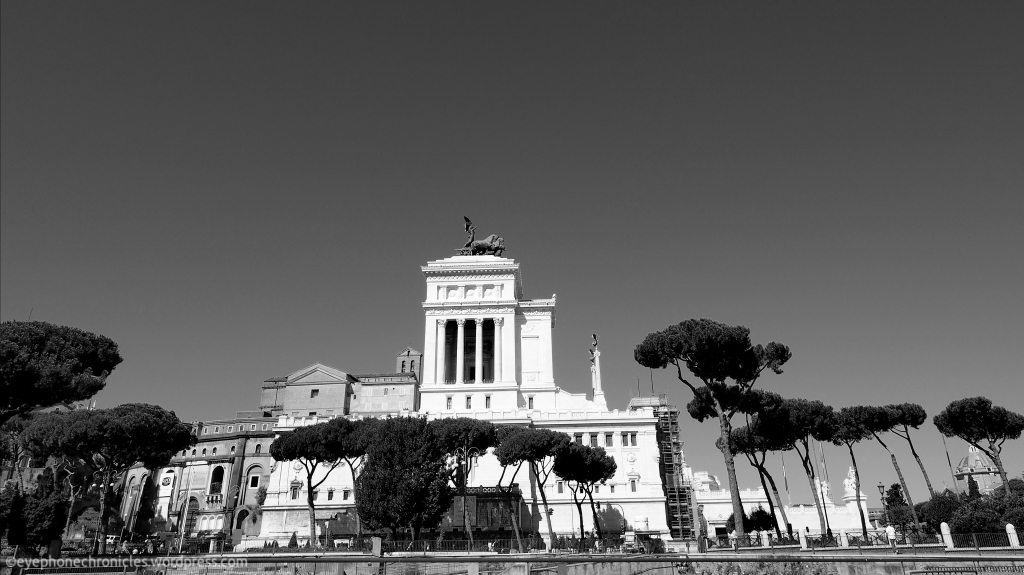 Rome trees (2)