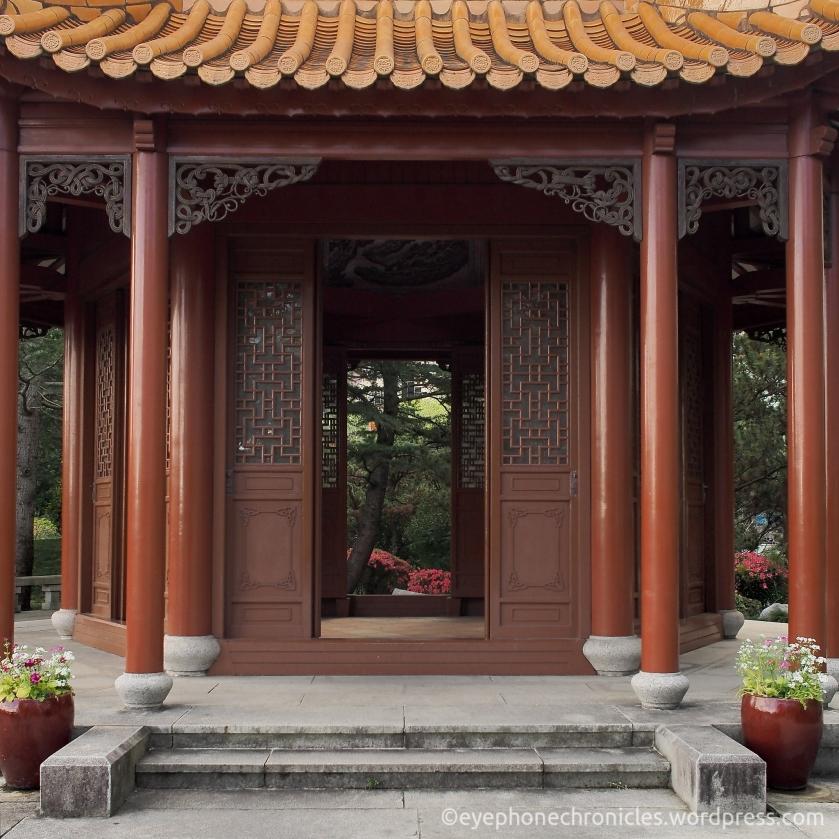 Sydney Chinese Garden (1)