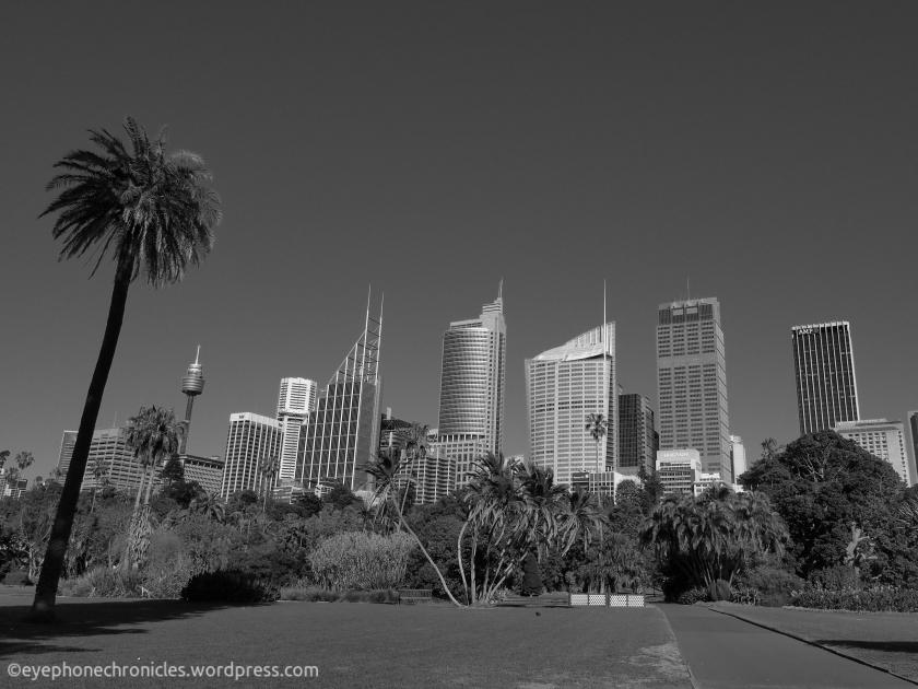 Sydney buildings (2)