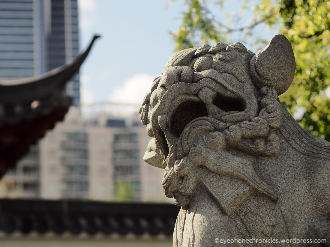 Sydney Chinese Garden (2)